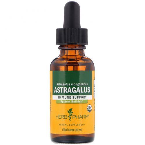 Herb Pharm, Астрагал, 1 жидкая унция (30 мл)