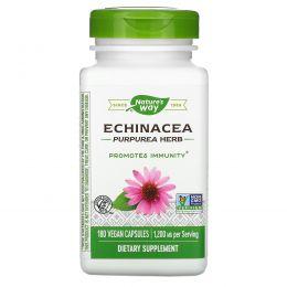 Nature's Way, Эхинацея пурпурная, 400 мг, 180 капсул