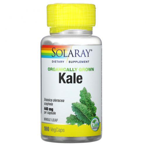 Solaray, Капуста, выращенная с использованием органических методик, 440 мг, 100 капсул с оболочкой из ингредиентов растительного происхождения