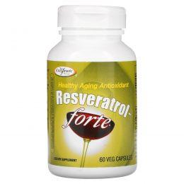 Enzymatic Therapy, Ресвератрол~Форте, 125 мг, 60 вегетарианских капсул