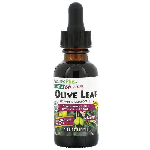 Nature's Plus, Herbal Actives, из листьев оливы, без спирта, 1 жидкая унция (30 мл)