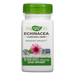 Nature's Way, Трава эхинацеи пурпурной, 400 мг, 100 вегетарианских капсул
