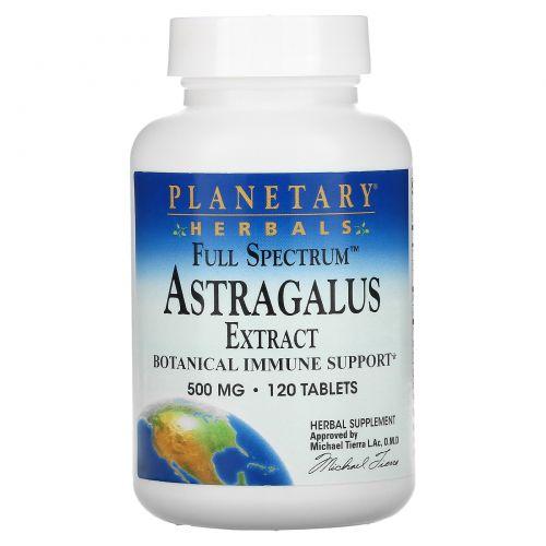 Planetary Herbals, Экстракт астрагала, полный спектр, 500 мг, 120 таблеток