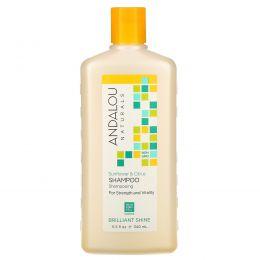Andalou Naturals, Shampoo, For Strength and Vitality, Brilliant Shine, Sunflower & Citrus, 11.5  fl oz (340 ml)