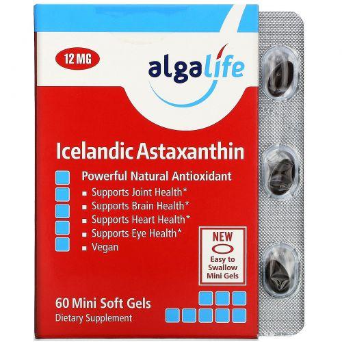 Algalife, Icelandic Astaxanthin, 12mg, 60 Gelcaps