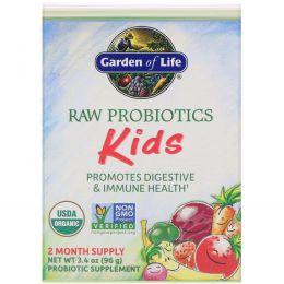Garden of Life, Сырые пробиотики, для детей, 3,4 унции (96 г) (Ice)