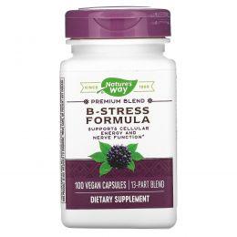 Nature's Way, Комплекс витаминов В и антиоксидантов для борьбы со стрессом, 100 капсул