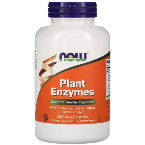 Now Foods, Растительные энзимы, 240 растительных капсул