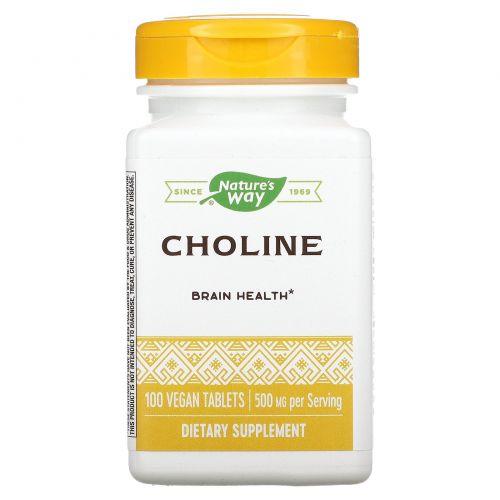 Nature's Way, Холин, 500 мг, 100 таблеток
