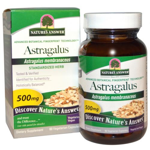 Nature's Answer, Астрагал, 500 мг, 60 растительных капсул