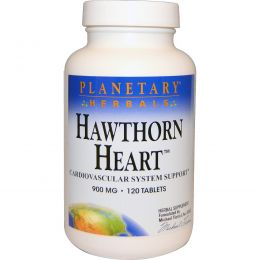 Planetary Herbals, Боярышник, 900 мг, 120 таблеток