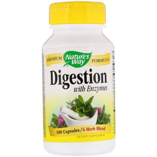 Nature's Way, Digestion with Enzymes, 450 mg, 100 Capsules
