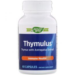 Nature's Way, Пищевая добавка Thymulus, мощная поддержка иммунитета, 60 капсул