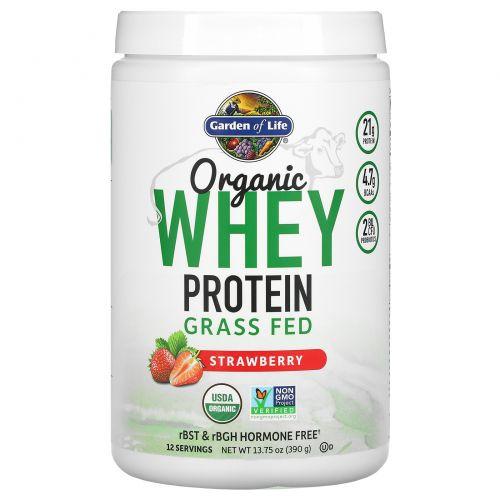 Garden of Life, Органический сывороточный протеин из молока коров, выращенных на подножном корме, клубника, 13,88 унций (393,5 г)
