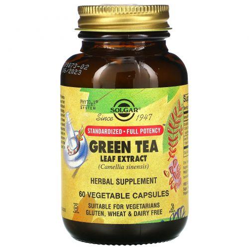 Solgar, Экстракт листа зеленого чая, 60 капсул на растительной основе