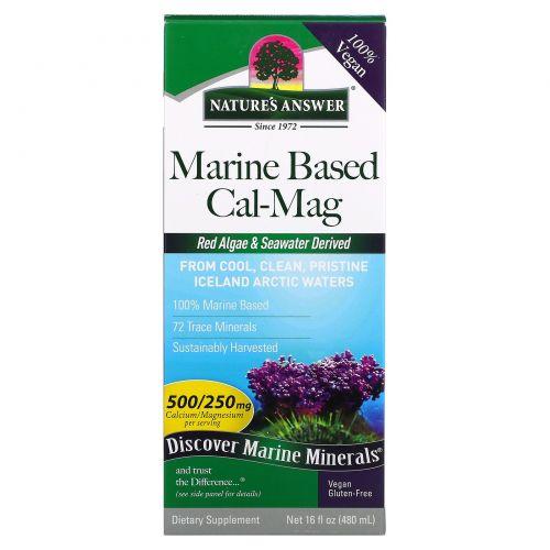 Nature's Answer, Plant Based Cal-Mag, Vanilla Cream Flavor, 16 fl oz (480 ml)