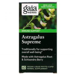 Gaia Herbs, DailyWellness, астрагал, 60 вегетарианских жидких фито-капсул