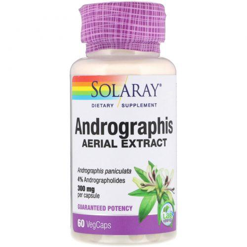 Solaray, Andrographis, Aerial Extract, 300 mg, 60 VegCaps