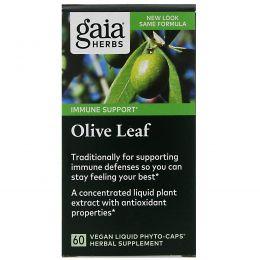 Gaia Herbs, Оливковые листья, 60 вегетарианских фито-капсул