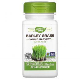 Nature's Way, Зеленые побеги ячменя, молодой урожай, 500 мг, 100 капсул