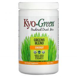 Wakunaga - Kyolic, Kyo-Green, сухая смесь для напитка, 10 унций (283 г)