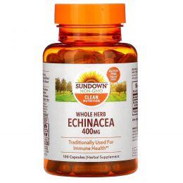 Sundown Naturals, Эхинацея, 400 мг, 100 капсул