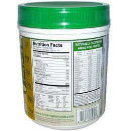 Growing Naturals, Протеин  из желтого гороха, ванильный взрыв, 16 унций (456 г)