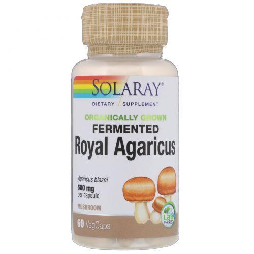 Solaray, Ферментированный органически выращенный королевский агарикс, гриб, 500 мг, 60 капусл