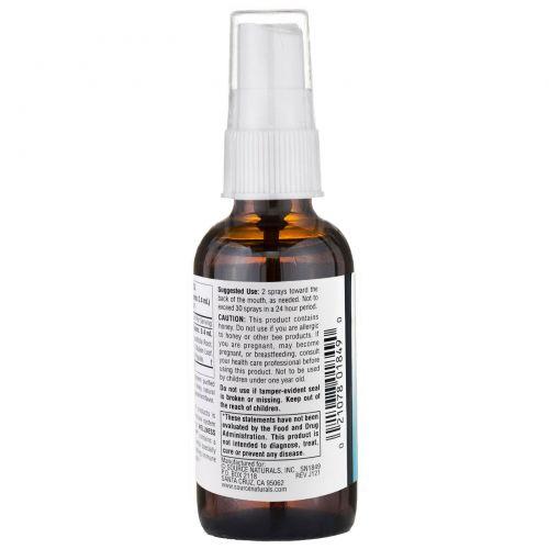 Source Naturals, Wellness, травяной спрей для горла, 2 жидкие унции (59,14 мл)