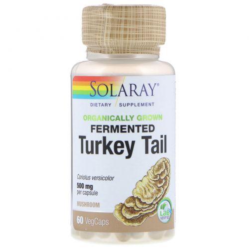 Solaray, Organically Grown Fermented Turkey Tail, 60 Veggie Caps