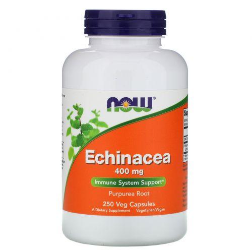 Now Foods, Эхинацея, 400 мг, 250 растительных капсул
