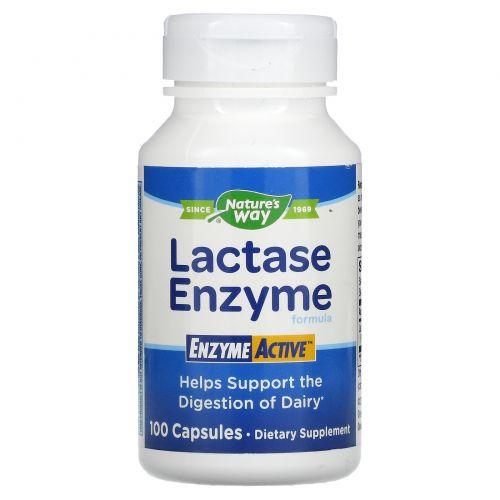 Nature's Way, Лактазная формула EnzymeActive, 100 капсул