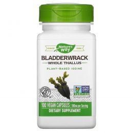 Nature's Way, Bladderwrack, 580 мг, 100 вегетарианских капсул