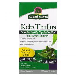 Nature's Answer, Бурая водоросль, 100 капсул