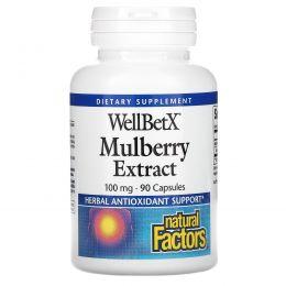 Natural Factors, WellBetX, мультиягодный экстракт, 100 мг, 90 капсул