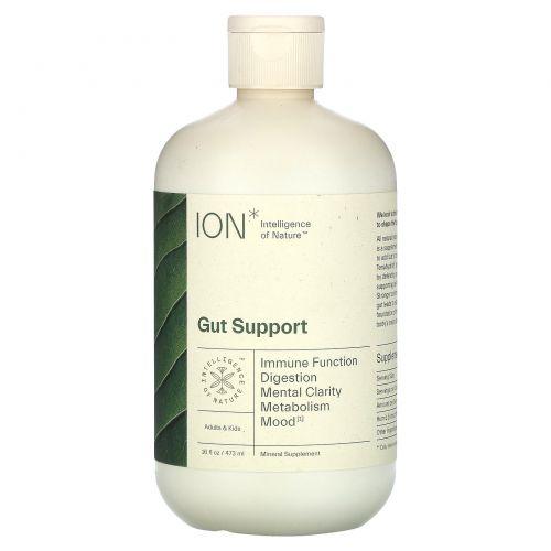 ION Biome, Gut Health, Mineral Supplement, 16 fl oz (473 ml)