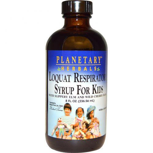 Planetary Herbals, Сироп для детей с мушмулой, 8 жидких унций (236,56 мл)