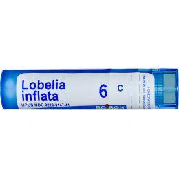 Boiron, Single Remedies, Лобелия вздутая, 6C, прибл. 80 гранул