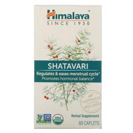 Himalaya Herbal Healthcare, Шатавари, женский тоник, 60 капсуловидных таблеток