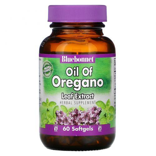 Bluebonnet Nutrition, Масло из экстракта листа душицы, 60 мягких капсул